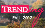 See What's Trending For Fall 2016