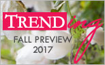 See What's Trending For Fall Preview 2017