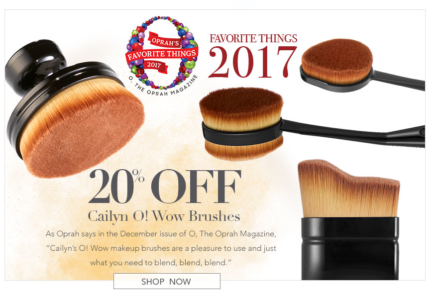 20% off Cailyn O! Wow Brushes